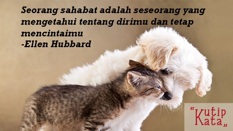 Kata Kata Persahabatan Sejati - Ellen Hubbard