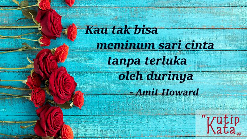Kata kata cinta sedih - Kutipan Amit