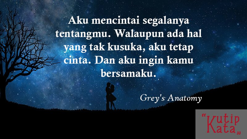 Caption Instagram Romantis - Grey's Anatomy