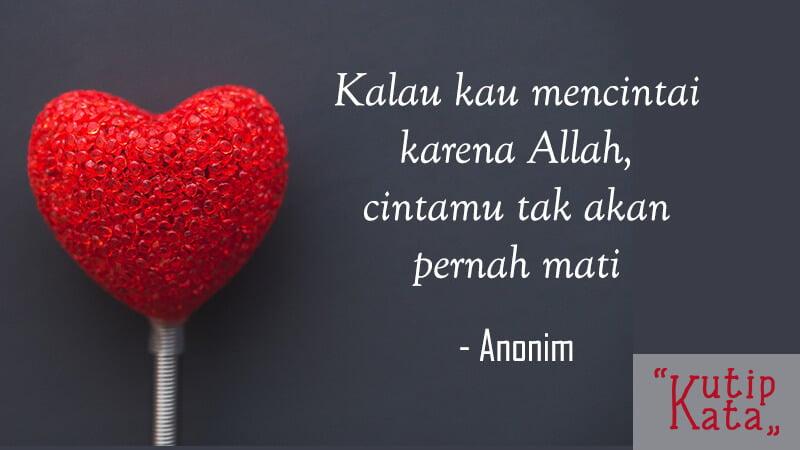 15 Kata Kata Cinta Islami Menyentuh Hati Sebagai Renungan