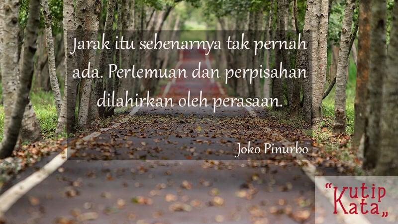 Kata Kata Cinta Sedih - Joko Pinurbo