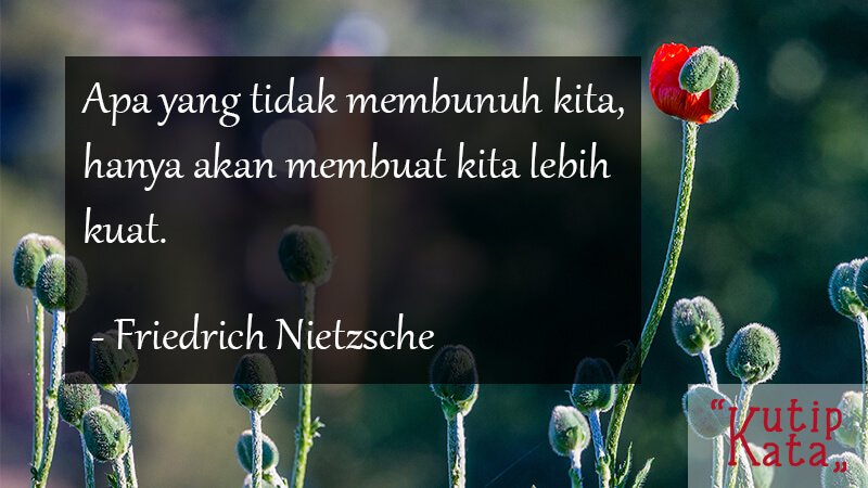 Kata Kata Motivasi Cinta - Friedrich Nietzsche